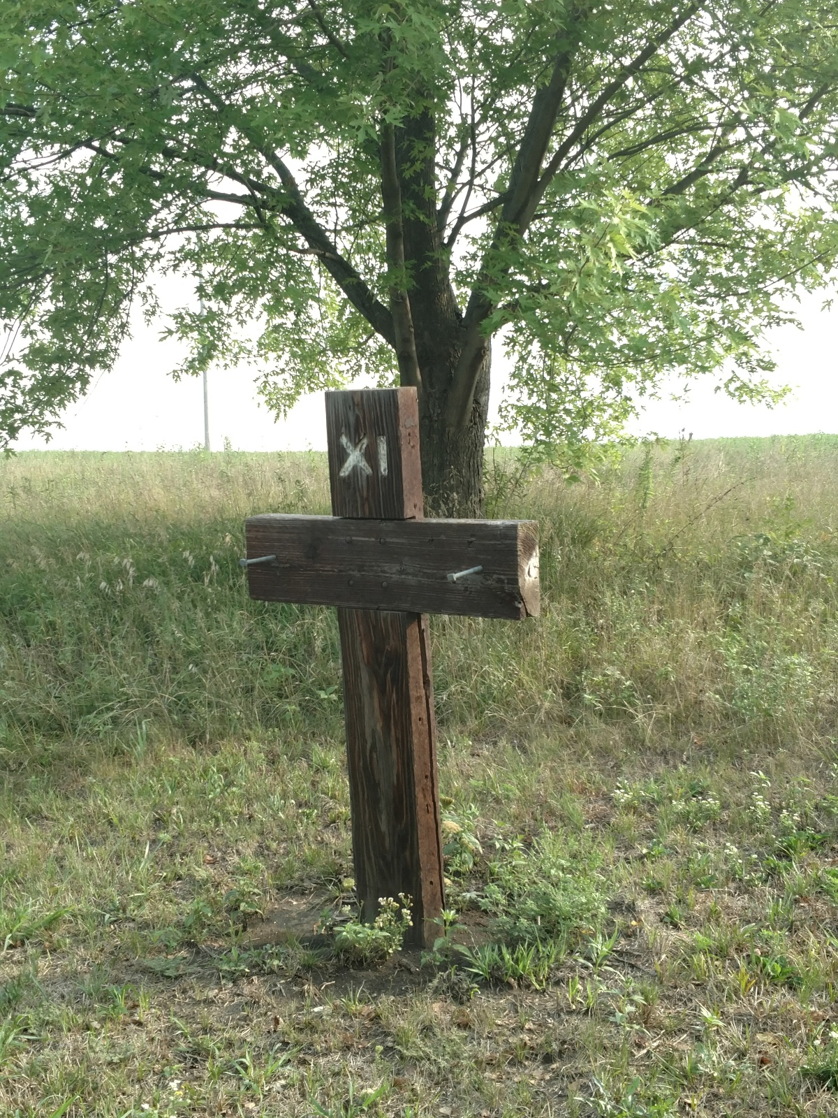 Stations of the Cross –Backwards